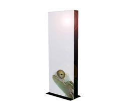 Display Lightbox 992 x 2480
